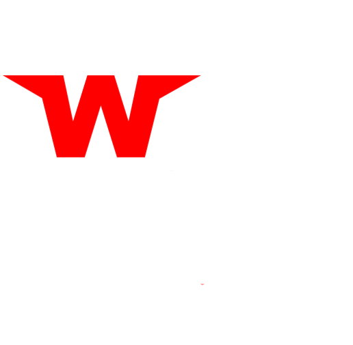 Wing City Wings